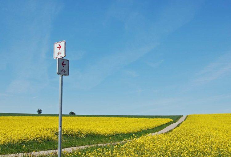 En cykelväg genom ett landskap med rapsfält. I förgrunden en vägskylt.